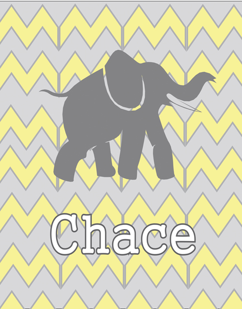 chevron elephant FP05-chevron elephant